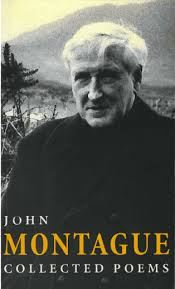 An Analysis of the Poetry of John Montague (3/4)