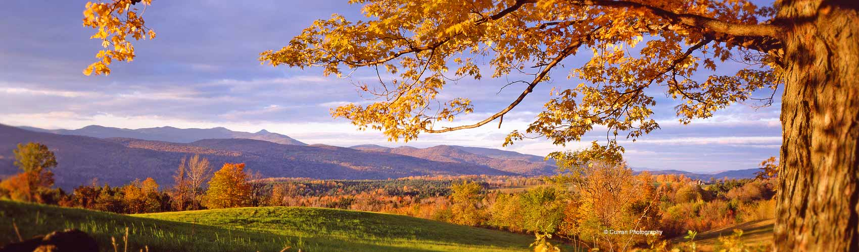 an analysis of the poetry of robert frost reviews vermont in the fall
