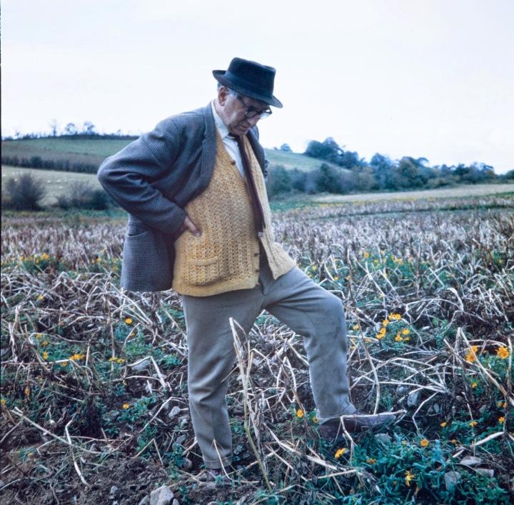 Patrick Kavanagh - Stony Grey Soil (1)
