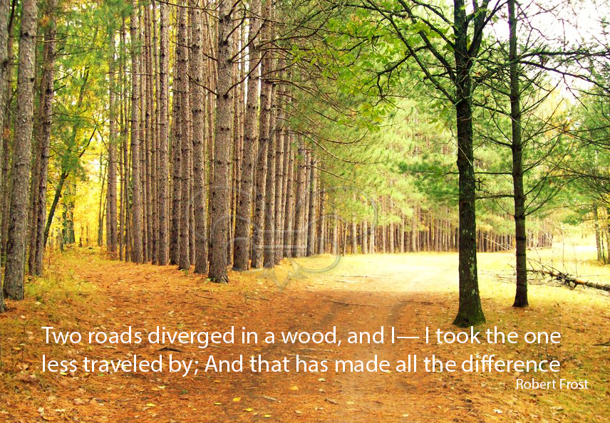 the road less traveled robert frost analysis