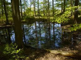 spring pools robert frost